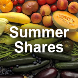 Summer Shares with Doe Run Farms