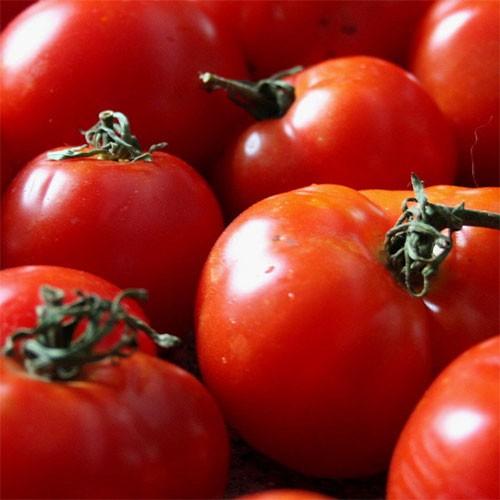 Tomato Lover's Share