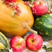 "Large Farm Box ""AUTUMN SEASON""  (5 weeks starts Oct. 29)  CHECK WITH FARM FOR AVAILABILITY"