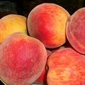 Peach Basket  (8 Quart)