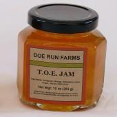 T.O.E Jam